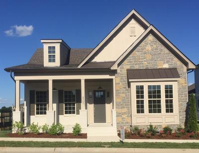 Nolensville Single Family Home For Sale: 2505 Whitlock Trail (Lot 181)