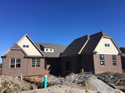Nolensville Single Family Home For Sale: 749 Eldon Lane-Lot 151
