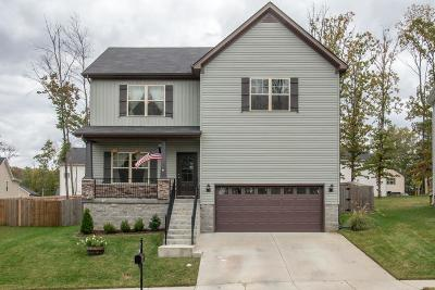 Single Family Home For Sale: 1817 Hillpoint Cir