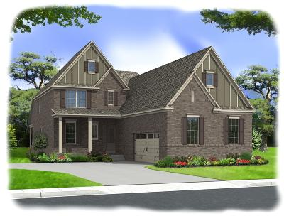 Nolensville Single Family Home For Sale: 753 Eldon Lane-Lot 150