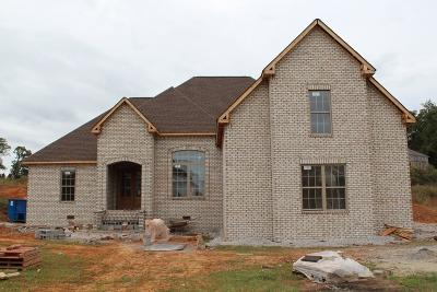 Pleasant View Single Family Home For Sale: 4066 Oak Pointe Dr