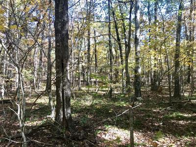 Coalmont Residential Lots & Land For Sale: 2 Sr 108