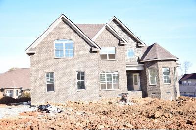 Smyrna Single Family Home For Sale: 604 Tamland Ave