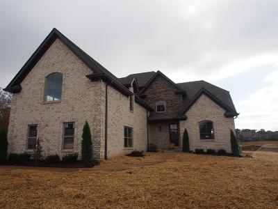 Hendersonville Single Family Home For Sale: 118 Thornwood Place