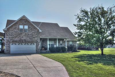 Hendersonville Single Family Home For Sale: 610 New Shackle Island Rd # 61