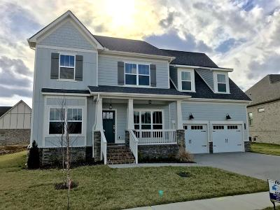 Nolensville Single Family Home For Sale: 104 Harley Ct