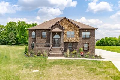 Clarksville Single Family Home For Sale: 25 Hartley Hills