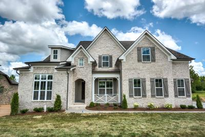 Nolensville Single Family Home For Sale: 291 Burberry Glen Blvd.-lot 2