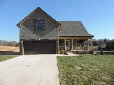 Clarksville Single Family Home For Sale: 44 Ivy Bend
