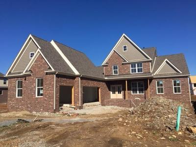 Nolensville Single Family Home For Sale: 74 Eldon Lane - Lot 74