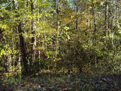 Smithville TN Residential Lots & Land For Sale: $25,000