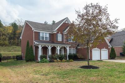 Nolensville Single Family Home For Sale: 2049 Delaware