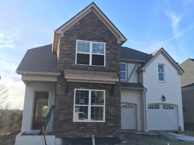 Hendersonville Single Family Home For Sale: 639 Lingering Way-Lot #339