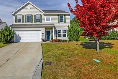Hendersonville Single Family Home For Sale: 134 Alred Cir