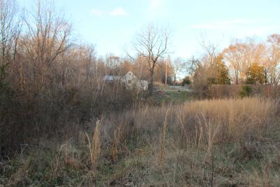 Christian County, Ky, Todd County, Ky, Montgomery County Residential Lots & Land For Sale: 4730 NE Old Metal Road
