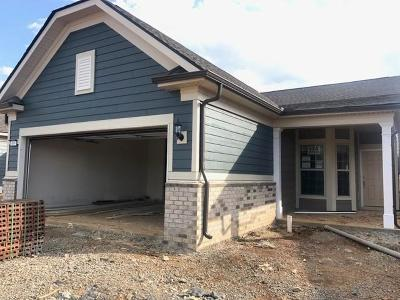 Spring Hill Single Family Home Under Contract - Not Showing: 869 Clay Place Lot#174