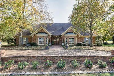 Williamson County Single Family Home For Sale: 217 Sturbridge Dr