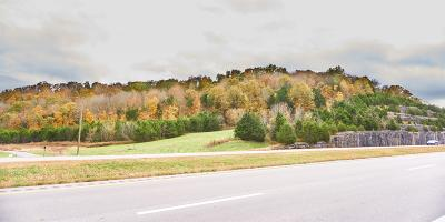 Cannon County Residential Lots & Land Under Contract - Showing: John Bragg Hwy