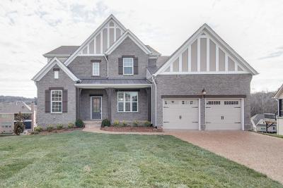 Nolensville Single Family Home For Sale: 326 Crescent Moon Circle #237