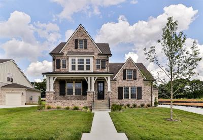 Thompsons Station Single Family Home For Sale: 1071 Brixworth Dr Lot 268