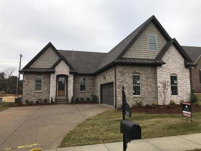 Hendersonville Single Family Home For Sale: 311 Archer Way East
