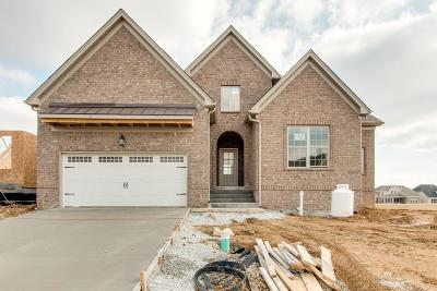 Mount Juliet Single Family Home For Sale: 3049 Elliott Drive #91
