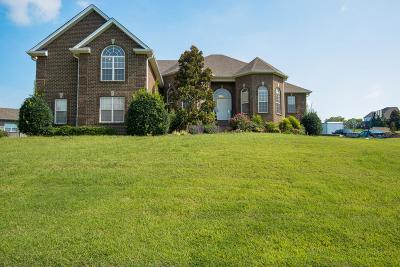 Mount Juliet Single Family Home For Sale: 950 Noel Dr