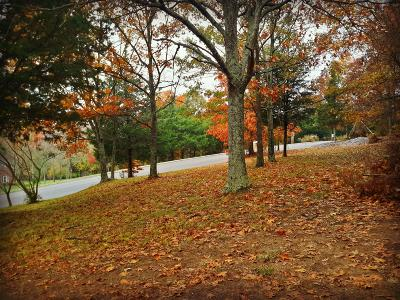 Mount Juliet Residential Lots & Land For Sale: 925 Gailynn Marie Dr
