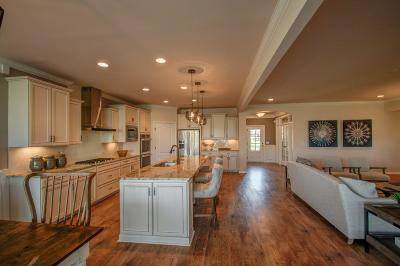 Spring Hill Single Family Home For Sale: 1007 Coffee Ridge #191