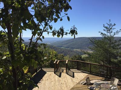 Altamont Single Family Home For Sale: 141 Roth Point Rd