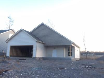 Christian County, Ky, Todd County, Ky, Montgomery County Single Family Home For Sale: 130 Magnolia Place