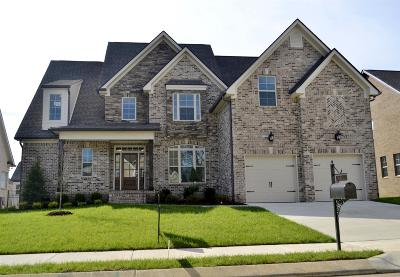 Spring Hill Single Family Home For Sale: 4045 Haversack Dr. (330)