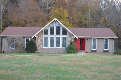 Davidson County Single Family Home For Sale: 9095 Highway 100