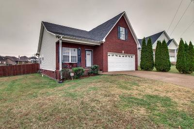 Spring Hill  Single Family Home For Sale: 1004 Patterson St