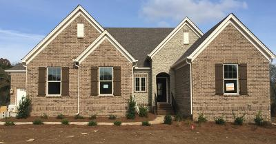 Sumner County Single Family Home For Sale: 1010 Brighton Lane #81
