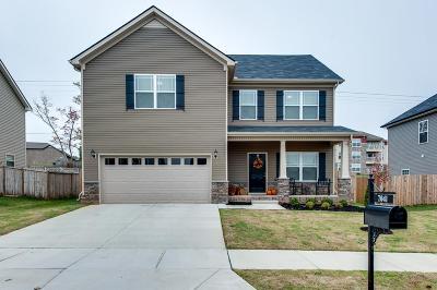 Spring Hill Single Family Home For Sale: 7041 Lakota Dr