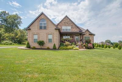 Mount Juliet Single Family Home For Sale: 2120 Logue Rd