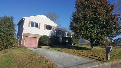 Mount Juliet Single Family Home For Sale: 615 Meadowview Dr