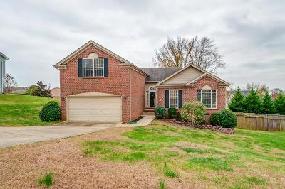 Spring Hill Single Family Home For Sale: 2673 Paradise Dr