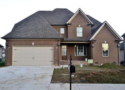 Spring Hill Single Family Home For Sale: 4130 Miles Johnson Pkwy (245)