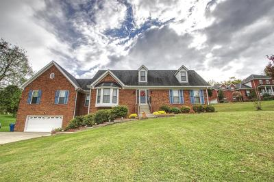 Hendersonville Single Family Home For Sale: 1018 Forestpointe