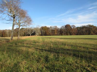 Wilson County Residential Lots & Land For Sale: Cairo Bend