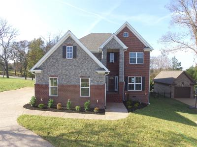 Lebanon Single Family Home For Sale: 127 Waters Hill Circle
