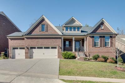 Mount Juliet Single Family Home For Sale: 426 Valley Spring Dr