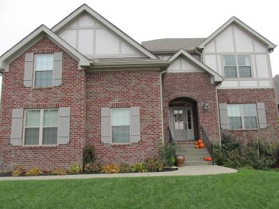 Goodlettsville Single Family Home For Sale: 113 Copper Creek Dr