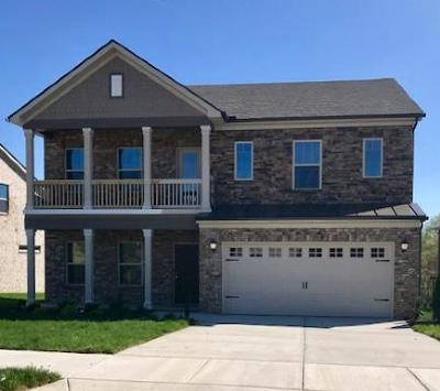 Goodlettsville Single Family Home For Sale: 655 Fall Creek Circle