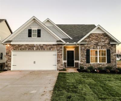 Spring Hill Single Family Home For Sale: 904 Carnation Drive