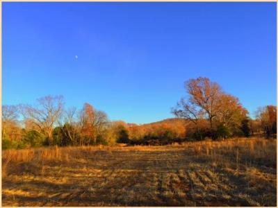 Williamson County Residential Lots & Land For Sale: 2646 Sanford Road *lot #50