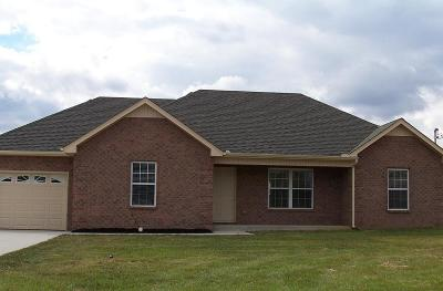 Smyrna Single Family Home Under Contract - Showing: 7123 Castile Dr