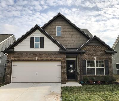 Spring Hill Single Family Home For Sale: 908 Carnation Drive